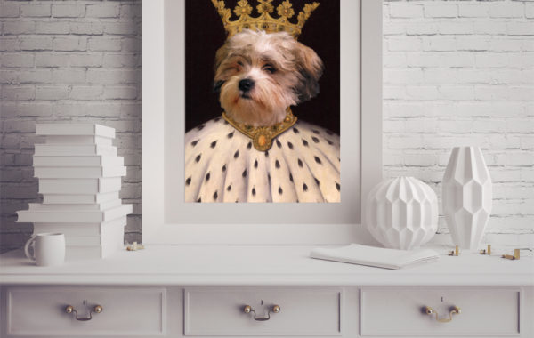 Pet Portrait – King 2